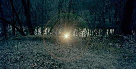 Adam Ekberg Flashlight On The Forest Floor - 2009